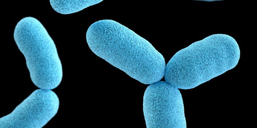 Gerosios bakterijos: kodėl jos būtinos gerai dantų sveikatai